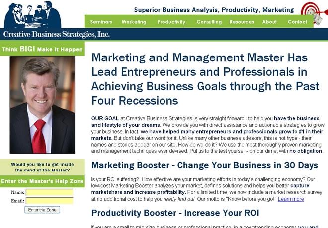 Creative Business Strategies Website Look and Feel