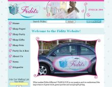 Fiditz Website Design