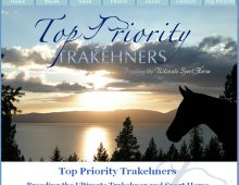 Top Priority Trakehners Website Design