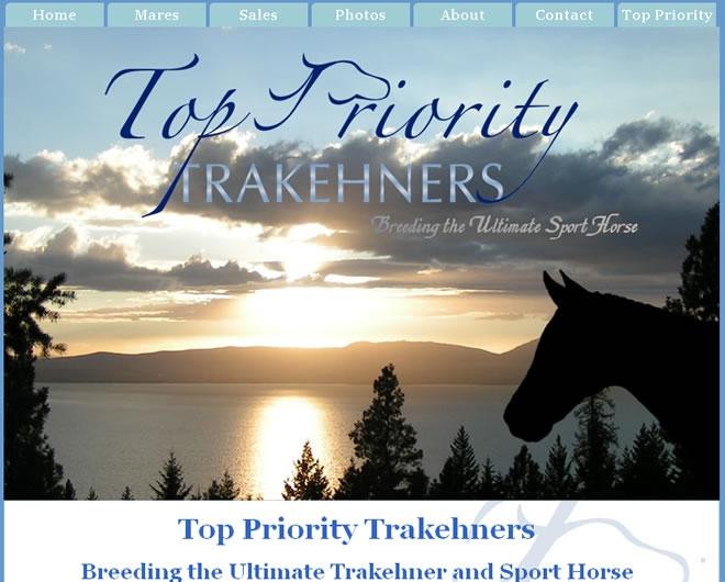 Top Priority Trakehners Website Look and Feel
