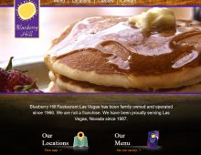 Blueberry Hill Family Restaurants Website Design